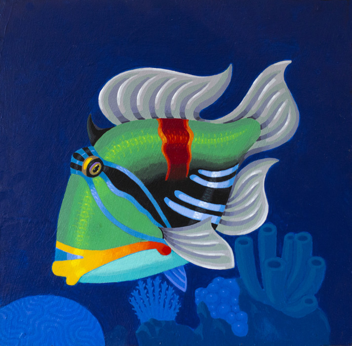 Picasso-Triggerfish